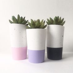 Urban Decor Homewares concrete succulent planters. Find us on Instagram. We wholesale & freight Australia wide.