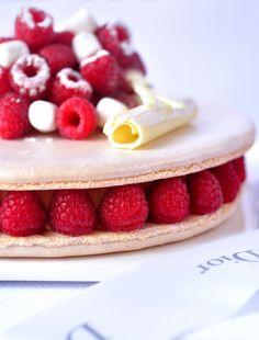 Gorgeous Macaron Cake