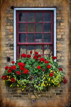 flower boxes - Google Search