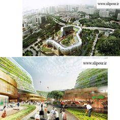 مجموعه ای به نام، مزرعه خانه، برای سالمندان...این مجموعه در سنگاپور قرار دارد و در آن ملاحظاتی برای نگهداری از سالمندان و تأمین غذای سالم برای آن ها ترتیب داده شده است. این طرح در فستیوال جهانی معماری ارائه شده و کانسپت اصلی آن ترکیب خانه های بازنشستگان با مزارع عمودی است.علاوه بر مزارع عمودی، این مجموعه دارای باغی بر روی بام و بازار میوه و تره بار است. بخشی از انرژی آن نیز از طریق نیروگاه زیست توده تأمین می شود سوخت لازم برای زیست توده نیز از طریق ضایعات کشاورزی مجموعه تأمین می شود