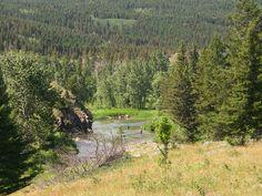Crowsnest River, Alberta