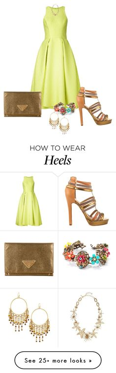"""""""Untitled #2508"""" by janicemckay on Polyvore featuring Monique Lhuillier, Nicole Miller, Sweet Romance, Prada, Oscar de la Renta, Lydell NYC, women's clothing, women, female and woman"""