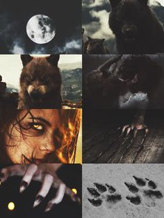She is a beast and a beauty. She is a she wolf Badass Aesthetic, Witch Aesthetic, Aesthetic Collage, She Wolf, Wolf Girl, Imagenes Dark, Legends And Myths, Howl At The Moon, Supernatural Beings