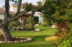 Good use of on site boulders to define planter borders. #CourtYard #Landscape #Outdoor ༺༺  ❤ ℭƘ ༻༻