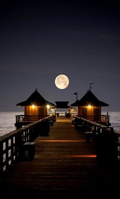 I love this pier._____________________________ Reposted by Dr. Veronica Lee, DNP (Depew/Buffalo, NY, US)