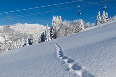 Groupon Viaggi - A tutta neve in Alto Adige!