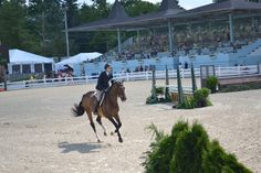 made it to Devon Horse Show - Jr. Hunters