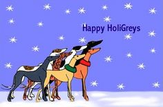 Happy HoliGreys!