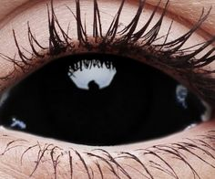Sclera Blackout Contact Lenses