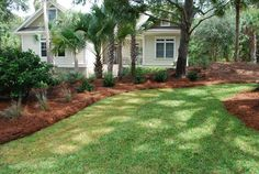 Front yard landscaping 1 mulch landscaping, front yard landscaping, water p Pine Straw Landscaping, Mulch Landscaping, Landscaping With Rocks, Front Yard Landscaping, Landscaping Ideas, Lawn And Landscape, Landscape Design, Garden Design, Landscape Architecture