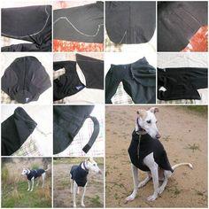 Source:http://badulakedeana.blogspot.com.es/2011/11/como-hacer-un-abrigo-para-tu-galgo.html