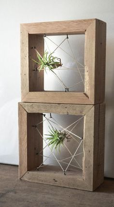 Vase wall decor geo - Plants On Wall - Ideas of Plants On Walls - Rustic Reclaimed Recycled salvaged wood AIR PLANT holders. Air Plants, Indoor Plants, Air Plant Display, Decoration Plante, Salvaged Wood, Reclaimed Timber, Recycled Wood, Cactus Y Suculentas, Indoor Garden