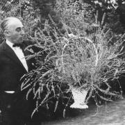 Il Giardino delle erbe, inaugurato nel 1975 ed oggi intitolato al suo fondatore Augusto Rinaldi Ceroni, è nato con l'obiettivo  di conservare  e coltivare  piante di interesse officinale  ed aromatico.