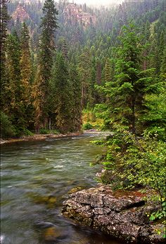 The beautiful Selway River in #Idaho, a large tributary of the Middle Fork River in the Selway-Bitterroot Wilderness, the Bitterroot National Forest, and the Nez Perce National forest