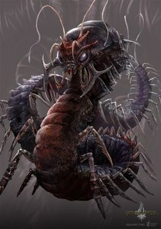 giant_centipede___gyromancer_by_kunkka-d3e96g7.jpg (751×1063)