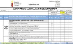 RECURSOS AULA DE APOYO: PTI DE ACNEE EN EXCEL