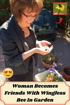 #Woman #Becomes #Friends #Wingless #Bee #Garden