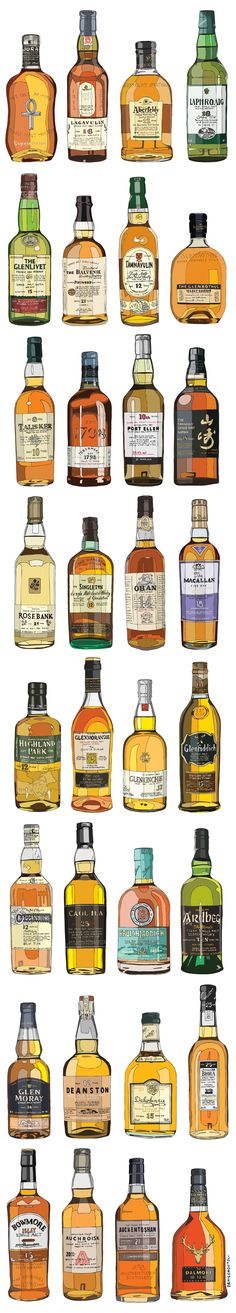 32 Single Malt Whiskies, hand drawn, digitally coloured.