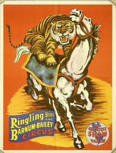 Premium Giclee Print: Ringling Bros and Barnum & Bailey Circus - Tiger On Horse by Pacifica Island Art : Cirque Vintage, Horse Posters, Art Posters, Ringling Brothers Circus, Barnum Bailey Circus, Vintage Circus Posters, Circus Art, Illustrations, Horse Art