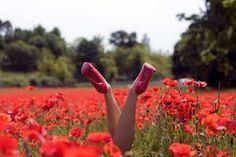 Frühling in rot