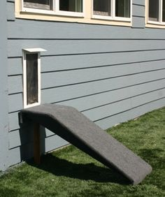 16 Best Dog Doors And Ramps Images