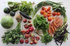 sztuka żywienia: żywienie dzieci: jak urozmaicić jadłospis dzieci-niejadków? czy soki to dobre rozwiązanie? szybkie pytanie - szybka odpowiedź
