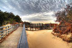 Jockey's Ridge State Park - Kitty Hawk, North Carolina