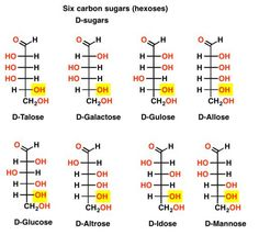 D- and L- Notation For Sugars – Master Organic Chemistry - Biochemie Chemistry Basics, Chemistry Quotes, Study Chemistry, Chemistry Classroom, Chemistry Lessons, Teaching Chemistry, Biology Lessons, Chemistry Experiments, Science Chemistry