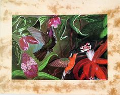 Whispering Wings Limited Edition Print from the Costa Rica Collection is available at NaturalArtist.com direct from the Artist. Features hummingbirds and the tropical foliage and flowers of the rainforest of Costa Rica. The original painting is acrylic and ink on coffee paper. (http://naturalartist.com/products/whispering-wings-limited-edition-print.html/)