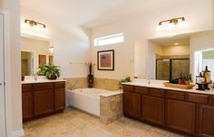 Google Image Result for http://www.delwebb.com/assets/images/Marketing_Library/Images/Product/Texas/CenTX-DW-SunCityTexas-7029/4.ModelPhotography/WEB-TX-IN-SunCityTexas-Chamberlain-MasterBath.jpg