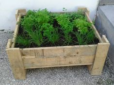 A beautiful planter for herbs reusing the wood from a pallet!   #Garden, #PalletPlanters, #RecyclingWoodPallets