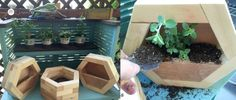 How to make DIY Hexagon Planters, free plans and picture tutorial. Diy Wood Planters, Diy Planters Outdoor, Planter Boxes, Hanging Planters, Scrap Wood Crafts, Scrap Wood Projects, Woodworking Projects Diy, Diy Furniture Easy, Wood Scraps