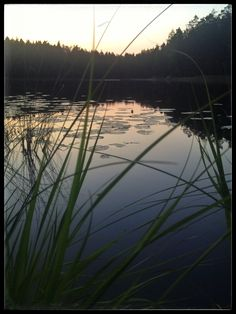 Nuuksio 6.8.2014 Main Entrance, Finland, National Parks, Hiking, River, Sunset, Nature, Outdoor, Beautiful