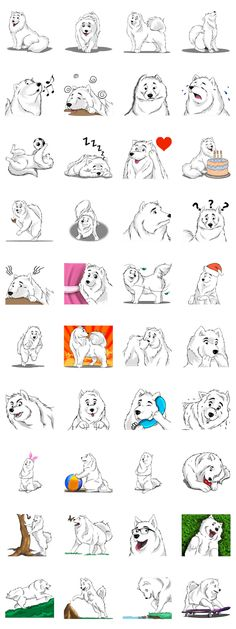 The Samoyed breed is world famous for being cute, cuddly, caring, gentle, loving, happy and friendly. Send messages with love using these stickers!