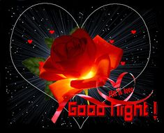 Lovely Good Night, Good Night Flowers, Good Morning Flowers Gif, Good Night Gif, Good Night Wishes, Good Morning Gif, Good Night Sweet Dreams, Night Time, Good Night Quotes Images