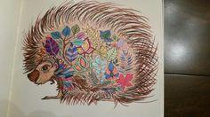 Enchanted Garden coloring book