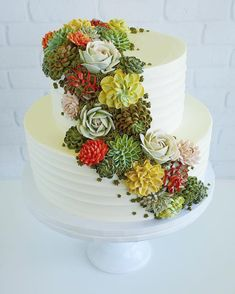 Buttercream Succulents Decorate Edible Planters by Leslie Vigil - Dr Wong - Emporium of Tings. Buttercream Flower Cake, Buttercream Frosting, Cake Shop Names, Beautiful Cakes, Amazing Cakes, Cupcakes Decorados, Plain Cake, Köstliche Desserts, Cakes And More