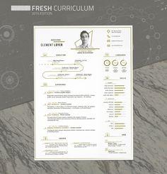 Free Fresh Resume Template