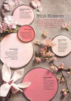 pink blossom #paint colors Pink Paint Colors, Paint Color Schemes, Interior Paint Colors, Paint Themes, Pink Blossom, Cherry Blossoms, Better Homes And Gardens, Color Pallets, House Painting
