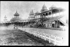 The old Fair Grounds at the site of the present Red Mile was first opened in August, Part of the South Broadway grandstand collapsed during a race meeting in the early and had been replace by a new one on Harness Racing, American Saddlebred, Types Of Horses, Horse Racing, Race Horses, My Old Kentucky Home, Vintage Horse, Horse Breeds, Show Horses