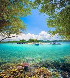 The Republic of Indonesia, located in South East Asia, is the largest island country in the world, with over islands and a population of over 225 million Belitung, Gili Island, Borobudur, Poker Online, Travel Alone, Future Travel, Countries Of The World, Ubud, World Heritage Sites