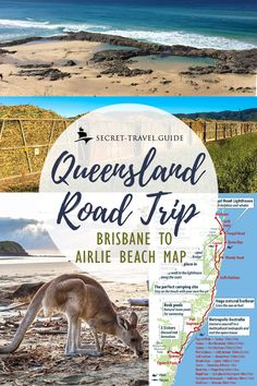 Queensland Road Trip - Brisbane to Airlie Beach - Go on a Queensland road trip from Brisbane to the Airlie Beach. Visit the Fraser Island, spend time - Road Trip Map, Road Trip Hacks, Road Trips, New Travel, Packing Tips For Travel, Travel Guides, Travel Oz, Beach Trip, Beach Road