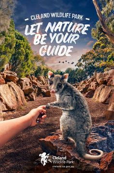 """""""Let nature be your guide.""""  Agency: Showpony, Adelaide, Australia"""