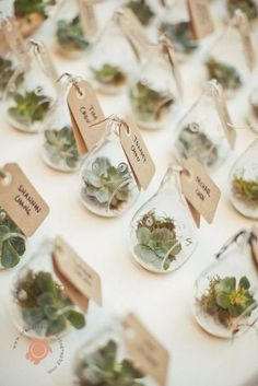 Guys, get ready, today I'm gonna inspire you with unbelievable beauties! One of the hottest trends in wedding world now is terrariums of all kinds. I'm talking ...
