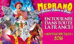 Cirque Toulouse : économisez jusqu'à 70% sur les entrées de cirque ...