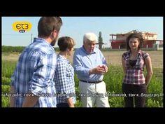"""Μητέρα Γη, """"Προωθούμενες καλλιέργειες και εκσυγχρονισμός της αγροτικής παραγωγής"""" - YouTube Button Down Shirt, Men Casual, Youtube, Mens Tops, Shirts, Dress Shirt, Dress Shirts, Youtubers, Shirt"""