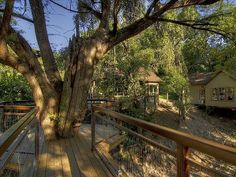 Cabin by the Guadalupe - Come Sleep in the Trees!