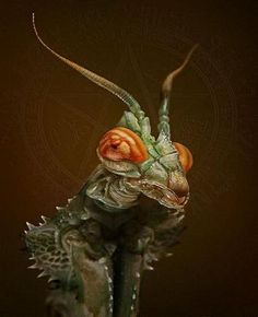 Cool looking Mantid.  Could be inspiration for a sci fi alien!