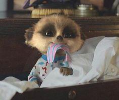 Tie Oleg