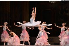One of the stunning Dew Drop tutus I made in action!    Photos: Boston Ballet's Nutcracker at the Opera House - Dance - Boston Phoenix